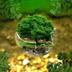 Környezetmérnök